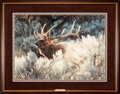 Art, Carl Brenders. Indian Summer - Bugling Elk (1999). 30 x 22 Inches.Print on paper; SN529 of 1500. Condition: Very good . Acc...
