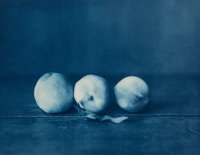 JOHN DUGDALE (American, b. 1960) Three White Peaches, 2000 Photogravure 10-1/4 x 13-3/8 inches (2