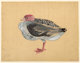 MORRIS GRAVES (American, 1910-2001) Bird, No. 845, 1939 Gouache on paper 12-1/2 x 16-1/8 inches (31.8 x 41.0 cm) Sig