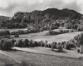 Photographs:Gelatin Silver, EDWARD WESTON (American, 1886-1958). Eel River Ranch, 1937.Vintage gelatin silver. 7-1/2 x 9-1/2 inches (19.1 x 24.1 cm...