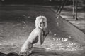 Photographs, LAWRENCE SCHILLER (American, b. 1936). Marilyn Monroe, 1962. Gelatin silver. 15-1/4 x 23 inches (38.7 x 58.4 cm). Signed...
