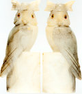 Books:Furniture & Accessories, [Bookends]. Matching Pair of Italian Alabaster Hand-Carved Owls.Ca. 1960s. Some light surface wear. One owl with a chipped ...(Total: 2 Items)