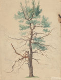 Texas:Early Texas Art - Drawings & Prints, CARL HERMANN FREDERICK LUNGKWITZ (German/American, 1813-1891).Tree, 1843. Watercolor and pencil on paper. 13-1/2 x 11 i...