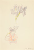Fine Art - Work on Paper:Drawing, JOSEPH STELLA (American, 1877-1946). Gladioli, 1919.Silverpoint and crayon on paper. 12 x 9 inches (30.5 x 22.9 cm).Si...