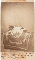 "Photography:CDVs, Union Canine ""Little Corporal"" Carte de Visite...."