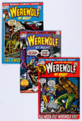 Bronze Age (1970-1979):Horror, Werewolf by Night Group (Marvel, 1972-77) Condition: AverageVG/FN.... (Total: 60 Items)