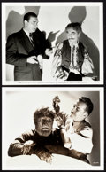 "Movie Posters:Horror, The Wolf Man (Universal, 1941). Photos (3) (8"" X 10"").. ... (Total:2 Items)"