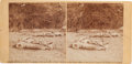 Photography:Stereo Cards, Dead Confederates at Gettysburg Stereoview....