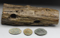 "Military & Patriotic:Civil War, Gettysburg Relics. First- a battle-scarred portion of a tree 15"" x 6"" that has been hit four times! Two round balls, one sh..."