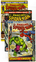 Bronze Age (1970-1979):Superhero, The Amazing Spider-Man Group (Marvel, 1973-74) Condition: Average FN-. Lot of five key Bronze Age Amazing Spider-Man boo... (Total: 5)