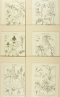 Books:Prints & Leaves, [Botanical Illustration]. Group of Ten Black and White Prints Depicting Various Types of Flowering Plants. [N.p., n.d., ca. ...