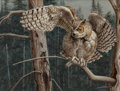 Paintings, GUY JOSEPH COHELEACH (American, b.1933). Balancing Act, Great Horned Owl, 1991. Acrylic on board. 30 x 40 inches (76.2 x...