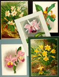 Books:Natural History Books & Prints, Group of Five Original Color Prints Depicting Various Types of Flowers. Various publishers and dates. ...