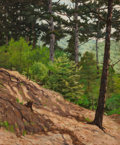 Fine Art - Painting, American:Modern  (1900 1949)  , BEN FOSTER (American, 1852-1926). Hillside Pines. Oil oncanvas. 30 x 25 inches (76.2 x 63.5 cm). Signed lower left:B...