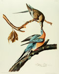 Books:Prints & Leaves, [Audubon]. Large Reproduction Print Depicting the Passenger PigeonAfter an Original Design by John James Audubon. [N.p., n....