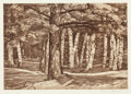 Fine Art - Work on Paper:Print, LUIGI LUCIONI (American, 1900-1988). The Birch Grove and Pine in the Birches (two works), 1961; 1958. Etching. Ed. 2... (Total: 2 Items)