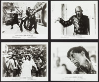 """Dawn of the Dead (United Film Distribution, 1978). Photos (8) (8"""" X 10""""). Horror. ... (Total: 8 Items)"""