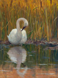 Fine Art - Painting, American:Contemporary   (1950 to present)  , RANDAL DUTRA (American, b. 1958). Swan Reflections. Oil oncanvas. 16 x 12 inches (40.6 x 30.5 cm). Signed lower right: ...