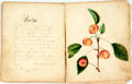 Books:Art & Architecture, [Folk-Art]. Small Folk-Art Sketchbook with Poems in Manuscript, Illustrated with Hand-Colored Drawings. [n.d., circa 1834]. ...