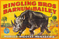"Movie Posters:Miscellaneous, Circus Poster (Ringling Bros/Barnum & Bailey, c.1940). LinenBanner (79"" X 117""). ..."
