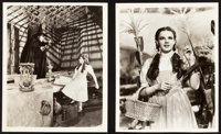 """The Wizard of Oz (MGM, 1939). Photos (2) (8"""" X 10""""). ... (Total: 2 Items)"""