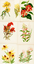 Books:Prints & Leaves, [Botanical Illustrations]. Group of Twenty-Two Color PlatesDepicting Various Types of Flowers, Fruits and Plants. Various p...
