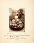 Books:Prints & Leaves, Antique Photograph Depicting A Gardener and His Prize-WinningVegetables. 1894. Mounted to backing for an overall size of ro...