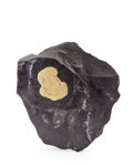 Minerals:Cabinet Specimens, PYRITE. Sparta. Illinois. USA. 9.05 x 8.26 x 1.35 x inches (23x21 x 3.45 cm). ...