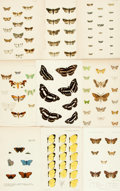 Books:Prints & Leaves, [Butterflies and Moths.] Forty-Two Color Plates DepictingButterflies and Moths. [N.p., n.d.]...