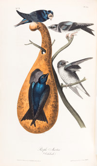 John James Audubon. The Birds of America, from Drawings Made in the United States and Their Territories