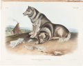 Books:Natural History Books & Prints, John James Audubon. Canis Familiaris - Plate CXIII (BowenEdition). Lithograph of the Esquimaux Dog, hand-colore...