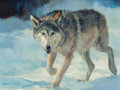 Fine Art - Painting, American:Contemporary   (1950 to present)  , DINO PARAVANO (Italian/American, b. 1935). Winter Wolf,2007. Oil on board. 9 x 12 inches (22.9 x 30.5 cm). Signed and d...