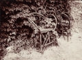 Photographs:Albumen, EUGÈNE ATGET (French, 1857-1927). Chairs in Garden,1899-1900. Albumen, printed 1978 by Chicago Albumen Works. 7 x9-1/4...