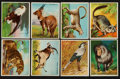 Non-Sport Cards:Sets, 1909-10 T29 Hassan Animals Near Set (78/80)....