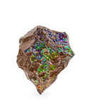 Fossils:Cepholopoda, AMMOLITE FOSSIL. Placenticeras sp.. Cretaceous, BearpawFormation. Southern Alberta, Canada. 4.88 x 4.52 x 1i...