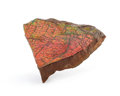 Fossils:Cepholopoda, AMMOLITE FOSSIL. Placenticeras sp.. Cretaceous, BearpawFormation. Southern Alberta, Canada. 5.31 x 4.17 x 1.52 inches(13...