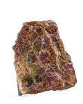 Fossils:Cepholopoda, AMMOLITE FOSSIL. Placenticeras sp.. Cretaceous, BearpawFormation. Southern Alberta, Canada. 4.33 x 3.66 x 0.76 inches(11...