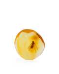 Amber, AMBER with INCLUSION. Hymenaea protera. Oligocene.Dominican Republic. 0.81 x 0.72 x 0.22 inches (2.08 x1.85 ...