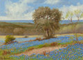 Texas:Early Texas Art - Regionalists, HUGO ALBERTO HERBECK (American, 1923-2009). Bluebonnets, SanAntonio, Texas. Oil on panel. 12 x 16 inches (30.5 x 40.6 c...