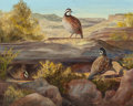 Texas:Early Texas Art - Modernists, OLIVE VANDRUFF (American, 1908-2003). Quail on the RockyLedge. Oil on canvas. 16 x 20 inches (40.6 x 50.8 cm). Signedl...