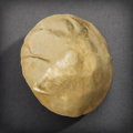 Pre-Columbian:Metal/Gold, A Chimu Gold Disc with Cylindrical Shaft on Verso ...