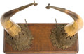 Antiques:Antiquities, Victorian/Edwardian Desk Ornament Incorporating Two Steer Horns....