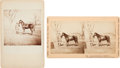 Photography:Cabinet Photos, Union General Ulysses S. Grant: Stereoview & Cabinet Card....