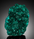 Minerals:Cabinet Specimens, DIOPTASE. Renéville Mine, Renéville, Kindanba District, PoolDepartment, Republic of Congo . . ...