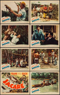 "Movie Posters:Documentary, Jacaré, Killer of the Amazon (United Artists, 1942). Lobby Card Set of 8 (11"" X 14""). Documentary.. ... (Total: 8 Items)"