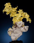 Minerals:Cabinet Specimens, NATIVE GOLD. Eagle's Nest Mine, Placer Co., California, USA.. ...