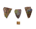 Fossils:Cepholopoda, AMMOLITE FOSSILS (Set of 3). Placenticeras sp.. Cretaceous,Bearpaw Formation. Southern Alberta, Canada. 4.51 x 3.27 x 0.5...(Total: 3 Items)