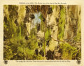 "Movie Posters:Adventure, Tarzan of the Apes (First National, 1918). Lobby Card (11"" X 14"")...."