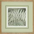 Books:Prints & Leaves, Brent Thomson. SIGNED/LIMITED. Framed Limited Edition LithographPrint Entitled, After the Rain. Undated. ...