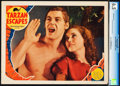 "Movie Posters:Adventure, Tarzan Escapes (MGM, 1936). CGC Graded Lobby Card (11"" X 14"").. ..."